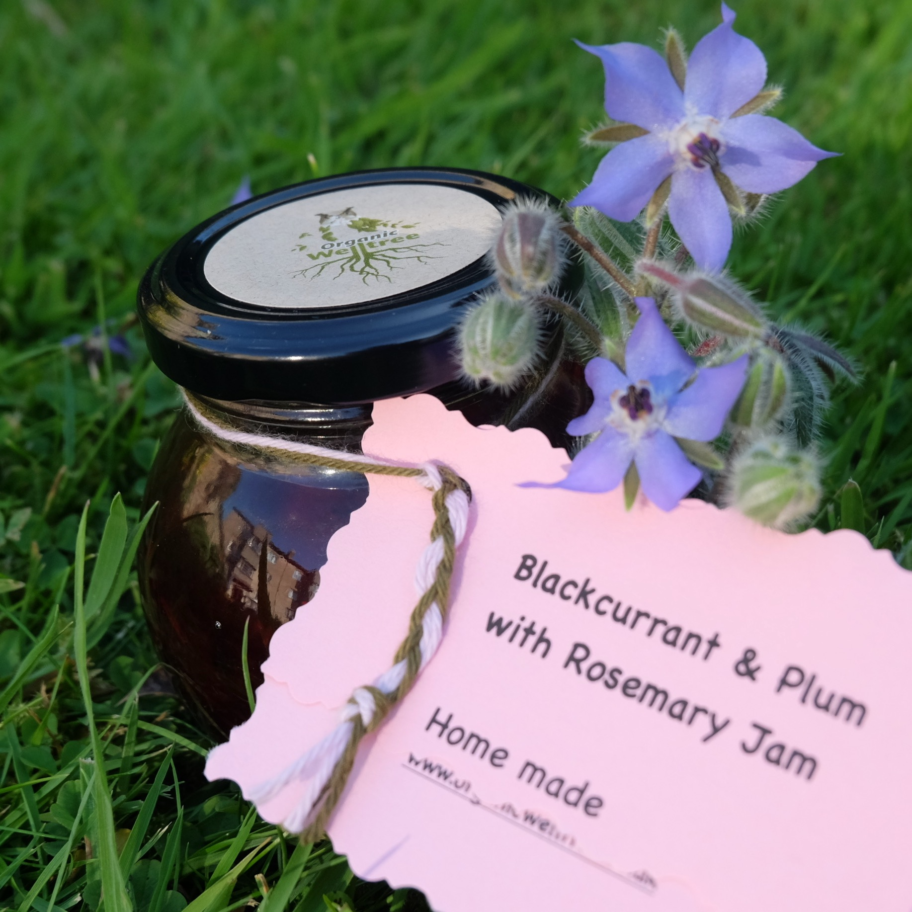 Blackcurrant & Plum with Rosemary (200g)