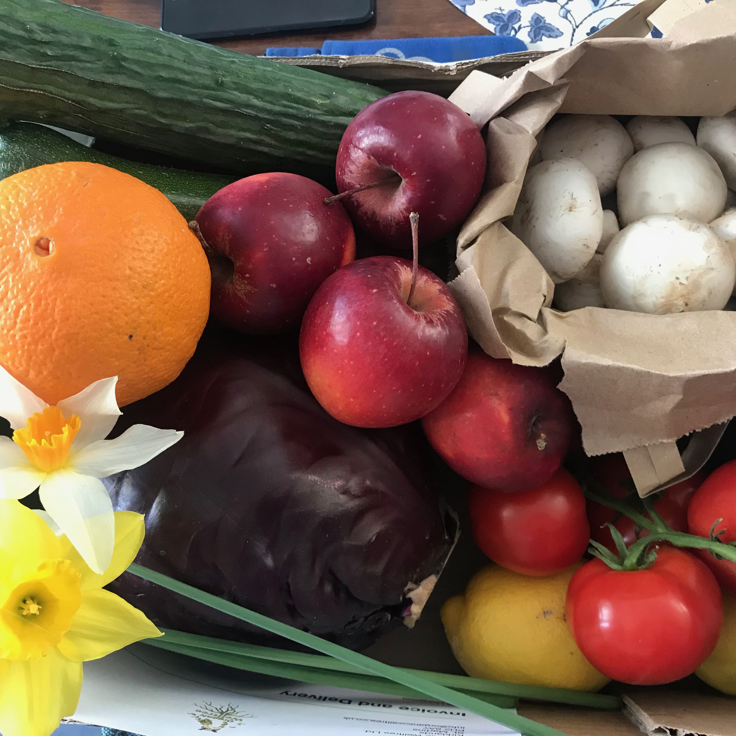 Vegetable & Fruit Box - Small
